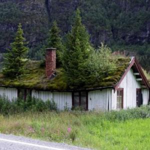 green-roof-thumb