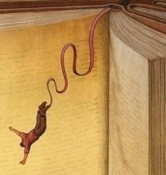 book-dive-small