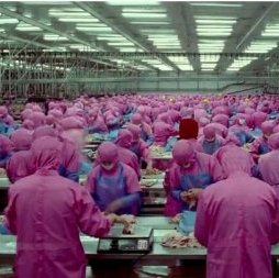 meat-factory