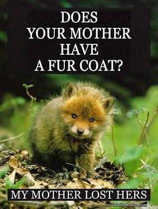 fur mother have a fur coat