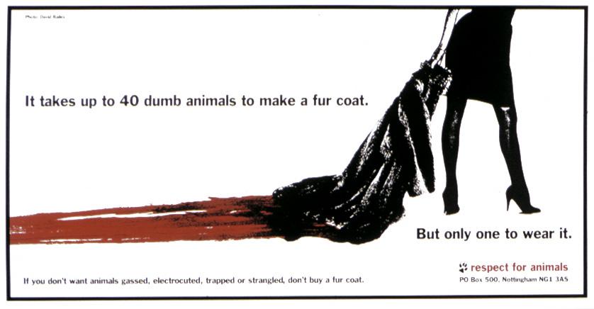 fur animal rights
