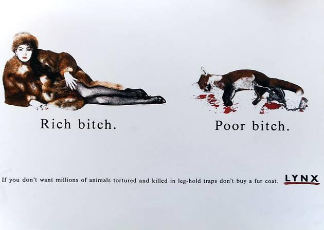 fur Lynx campaign images.