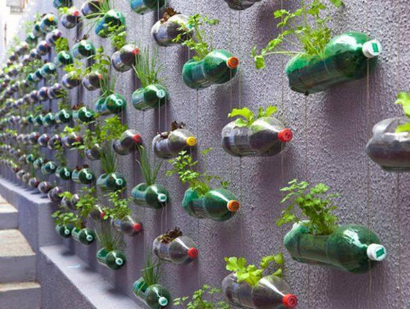 בקבוקי פלסטיק הפכו לעציצים