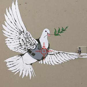 peace-dove-shot-thumb