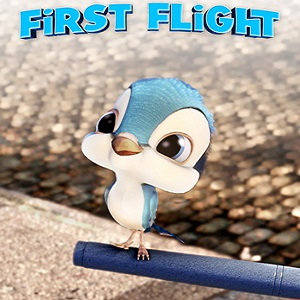 First_Flight