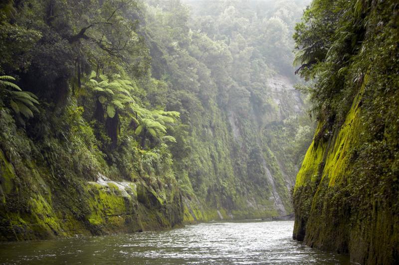 נהר וואנגנוי בניו זילנד